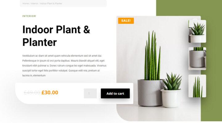 Modelo de página de producto con Divi y WooCommerce